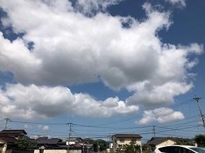 S__64970768.jpg